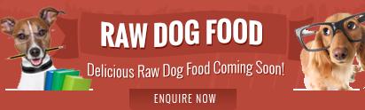 raw-dog-food